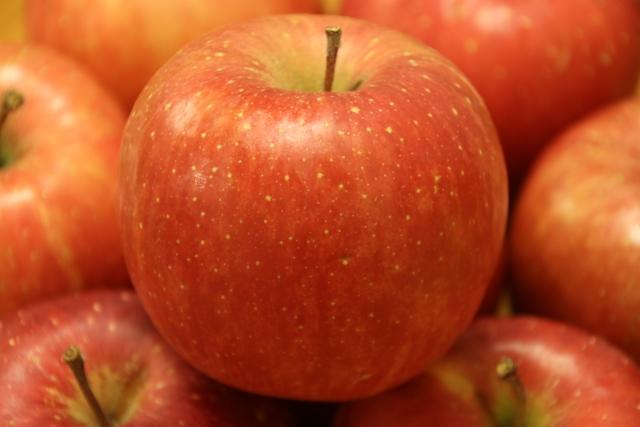 リンゴ(ふじ)